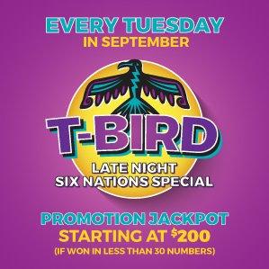 Six Nations Bingo T-Bird Late Night Special